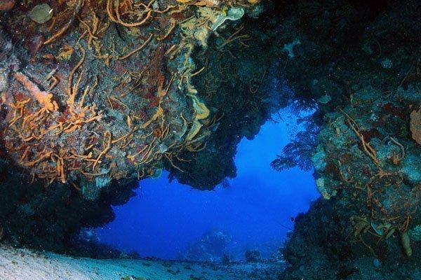 cozumel diving punta sur